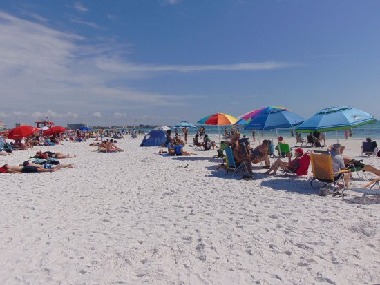Picture Of Siesta Key Beach