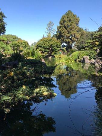 San Mateo, CA: photo4.jpg