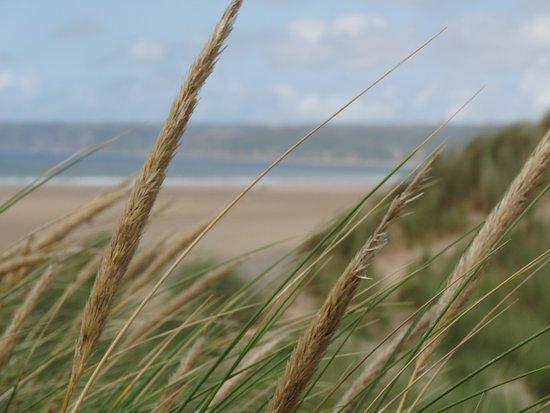 La plage de Biville en juillet depuis les dunes