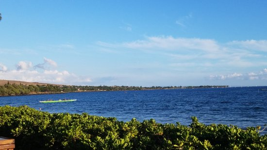 Hyatt Regency Maui Resort and Spa: 20170802_181628_large.jpg