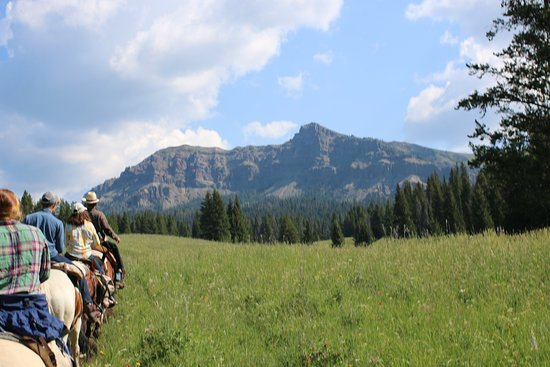 Gallatin Gateway, MT: Beautiful scenery on our trail ride!