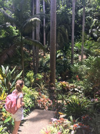 Hunte's Gardens is a beautifully tranquil garden, stop a while and watch the wildlife.
