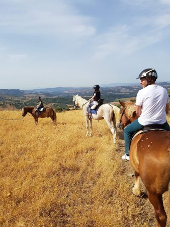 Foto de Riding Fun In The Sun