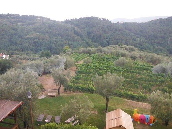 Agriturismo La Burlanda Picture