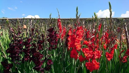 Storrington, UK: Parham House & Gardens