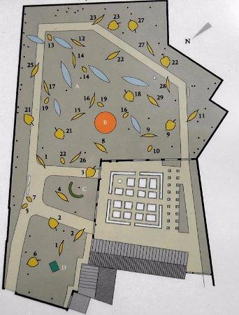 Maison d'Erasme: plan des deux jardins