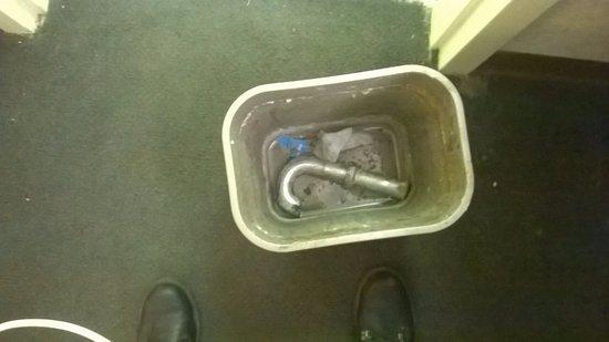 Heath, OH: Trash in bathroom area trashcan