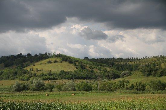 Agnita, Ρουμανία: Widok z ośrodka