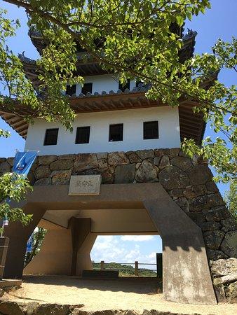 Sumoto Castle: photo0.jpg