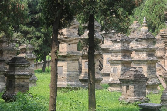 Pagoda Forest of Shaolin Temple: 20170806113100_IMG_1064_large.jpg