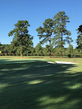 Golden Horseshoe Golf Club : Practice green
