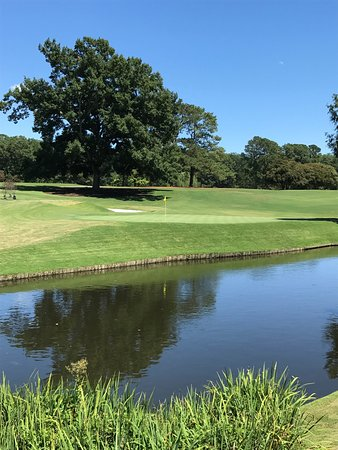Golden Horseshoe Golf Club : New 18th green ..so close to the water