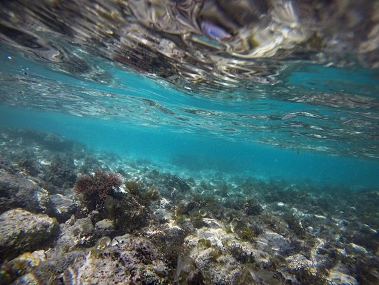 Viti Levu, Figi: photo2.jpg