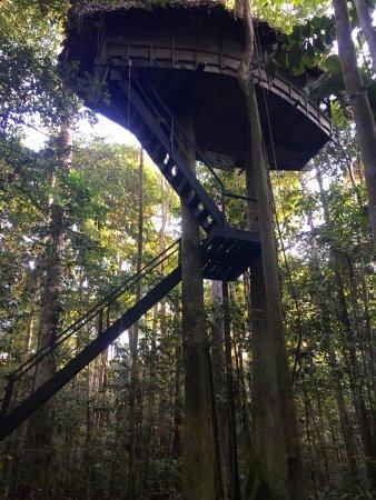 Reserva Natral Tanimboca : photo0.jpg