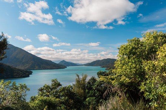 Picton, New Zealand: photo0.jpg