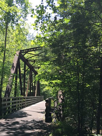 Blue Blaze Bicycle & Shuttle Service: This is one of many bridges we crossed on the trail. It is really beautiful.