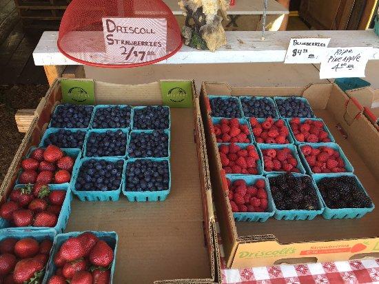 Sisters, Oregón: berries and more berries!