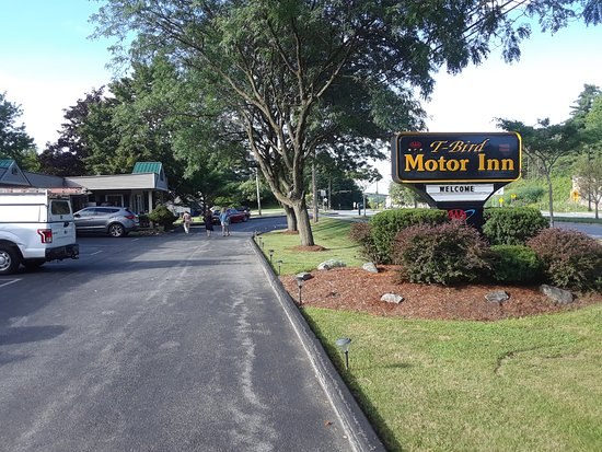 T-Bird Motor Inn: Street view, South burlington