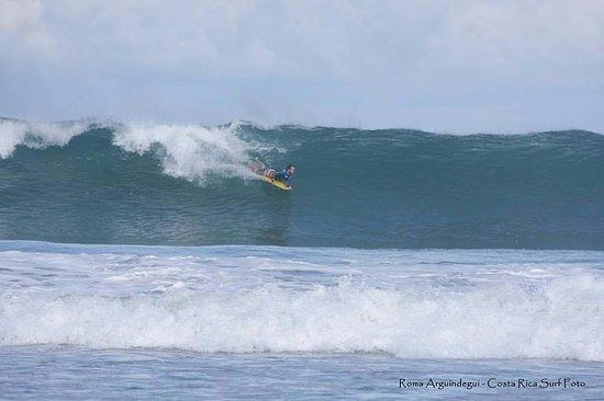 Pavones, Costa Rica: Surf