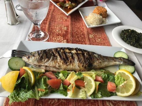 Picture of alaturco mediterranean cuisine for Athena mediterranean cuisine ny
