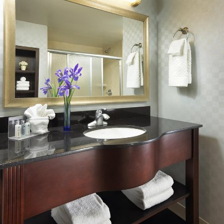 Hampton Inn San Diego/Mission Valley: Bathroom Vanity