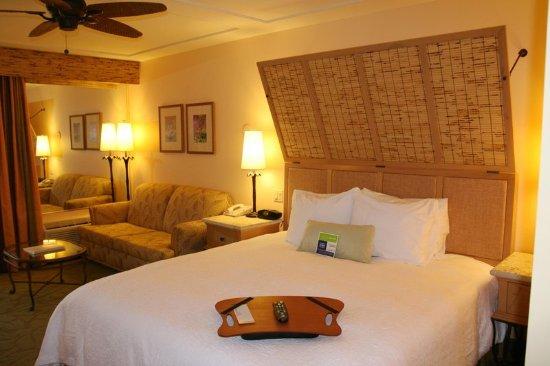 Hampton Inn Key Largo: King Room