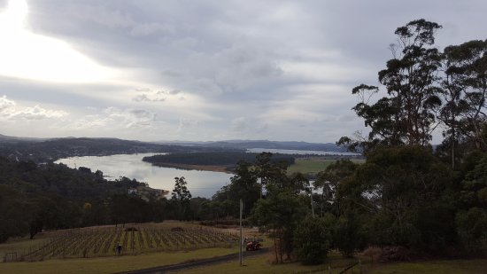 The Tamar Valley : late afternoon