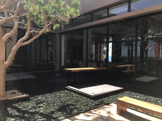 Cafe des Artistes Los Cabos: photo1.jpg