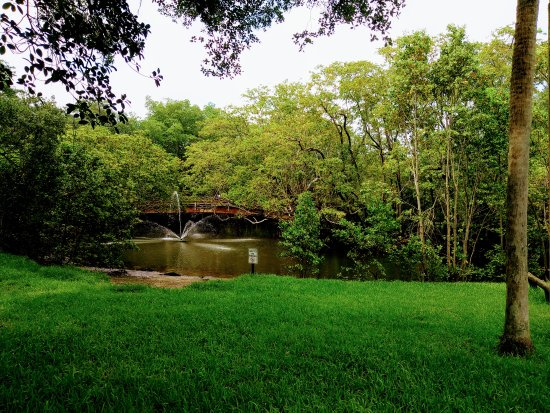 North Miami, Floride : Relaxing and green trails