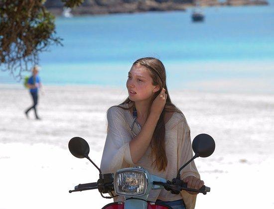Waiheke-øya, New Zealand: Island Scoot, Onetangi Beach