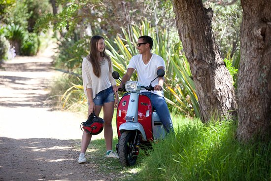Hire an Island Scoot for the perfect day trip to Waiheke Island.