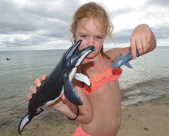 Moorea, French Polynesia: Découverte du lagon / Lagoon discovery day