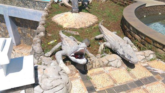 long hai photos featured images of long hai  ba ria vung