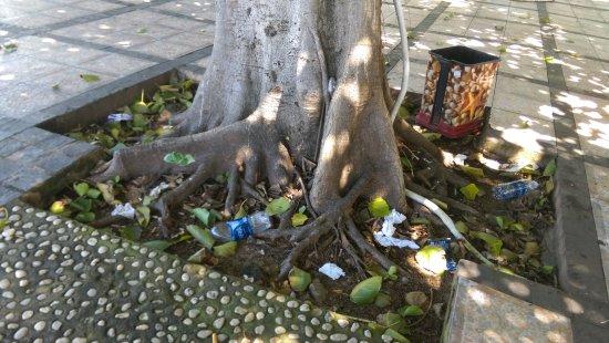 Long Hai Beach Resort: IMAG2136_large.jpg