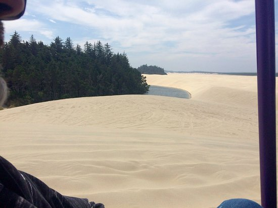 Florence, OR: The dunes are so expansive