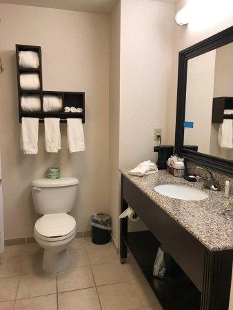 Hampton Inn Ozark: Room 315
