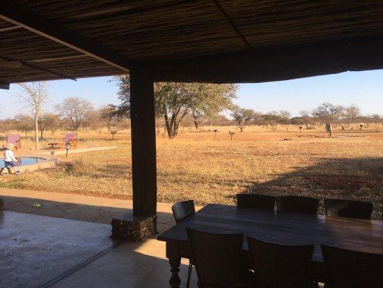 Lephalale, جنوب أفريقيا: photo2.jpg