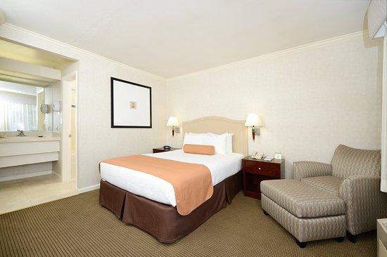 Menlo Park, CA: Queen Guest Room