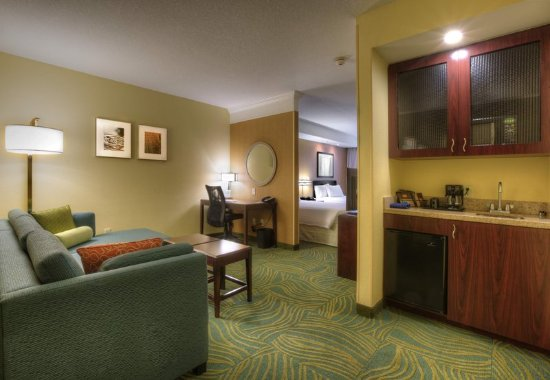 Springhill Suites Tampa Brandon Updated 2017 Prices