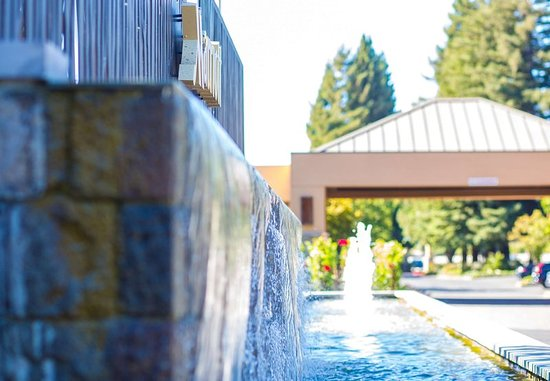 Napa Valley Marriott Hotel And Spa Reviews