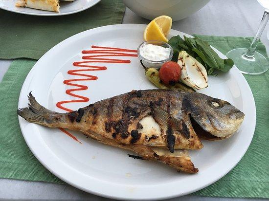 Akcaabat, Turkiet: The super sea bream in the restaurant!