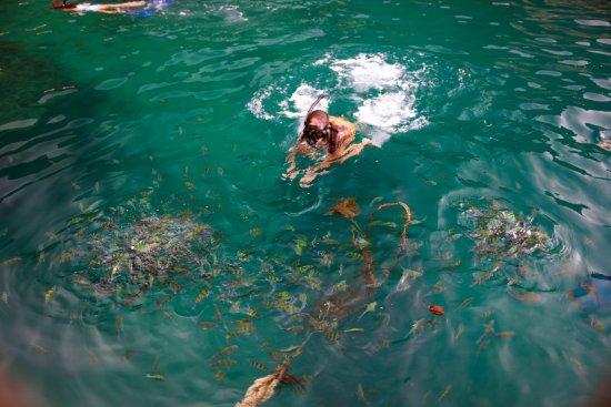 Chalong, Thailand: Koh Phi Phi (острова Пхи Пхи) #thaicharters
