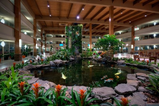 Suffern, Estado de Nueva York: Atrium Koi Pond