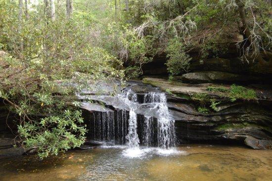 Pickens, Νότια Καρολίνα: Carrick Falls in summer