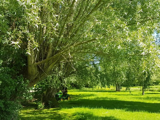 Magny-Cours, France : The gardens of Fonsegre