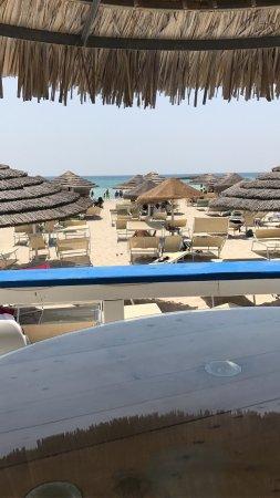 Il Giardino dei Pini: Spiaggia convenzionata. Favolosa!