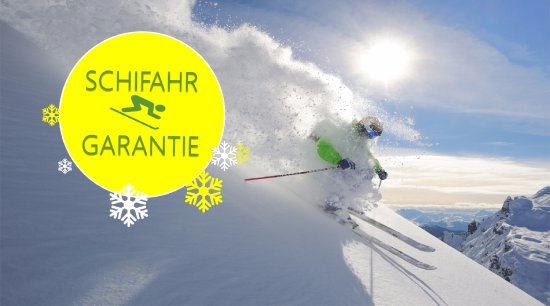 Hotel Lux Alpinae: Skiing