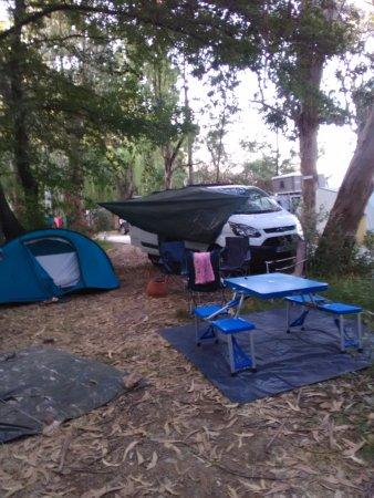 Camping La Pinède : emplacement ombragés