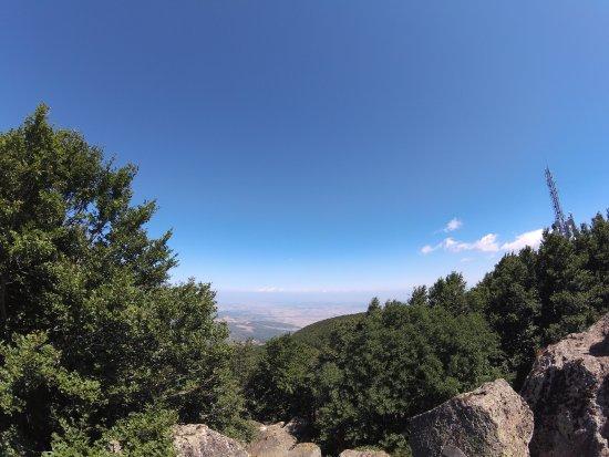 Monte Amiata Wildlife Park