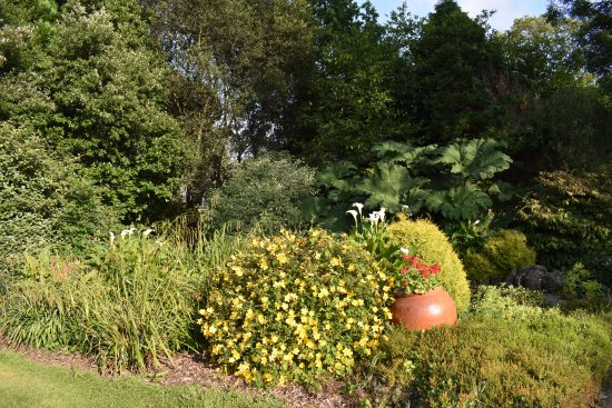 Ballingarry, Irland: garden